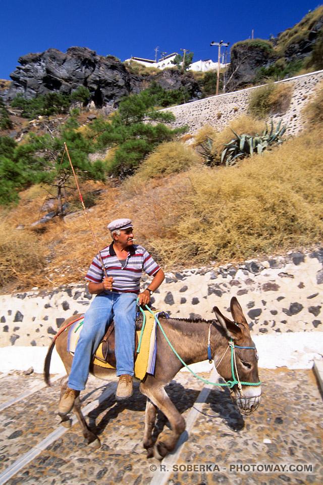 Tourisme île de Santorin visite à dos d'Ane
