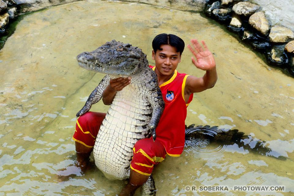 Photo d'une mauvaise ambiance toursitique et odeur pestilentielle des Crocodiles
