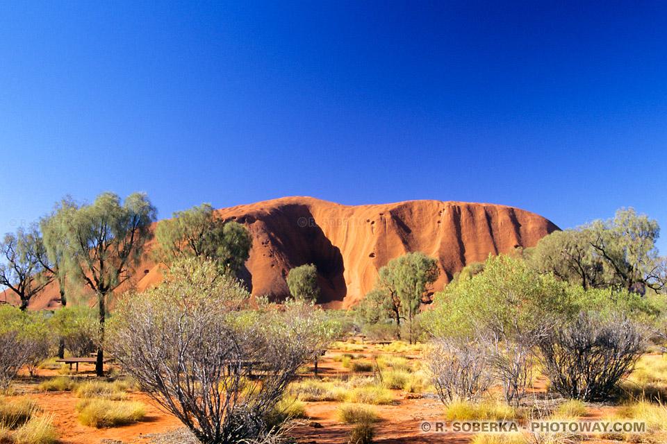Photo-guide touristique dans le désert en Australien visite d'Uluru