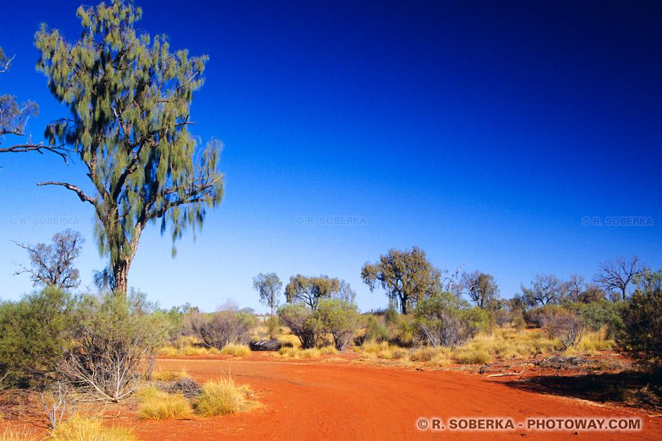 Photo du sol aride du désert Australien