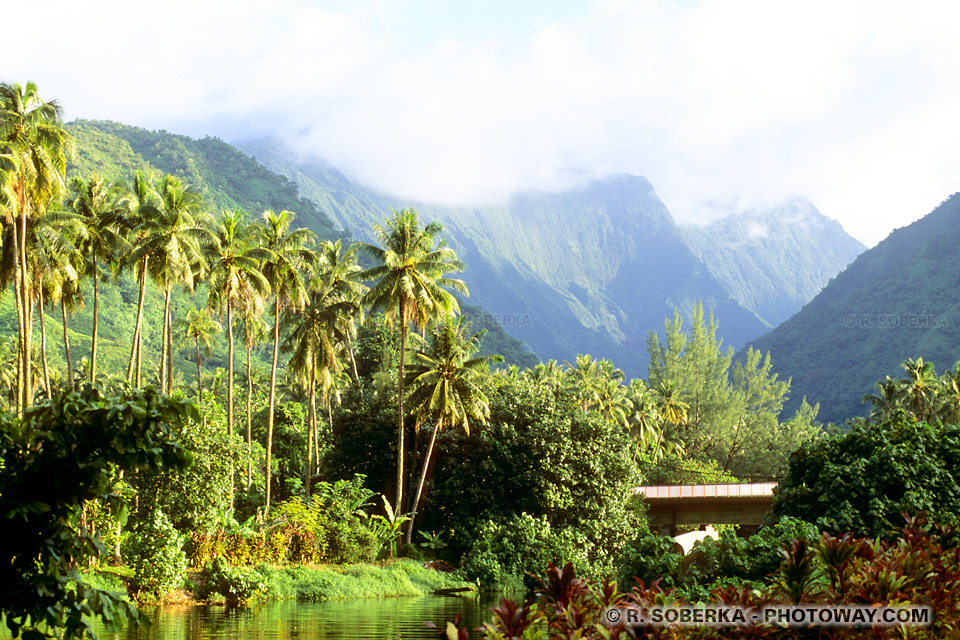 Photo du centre Tahiti