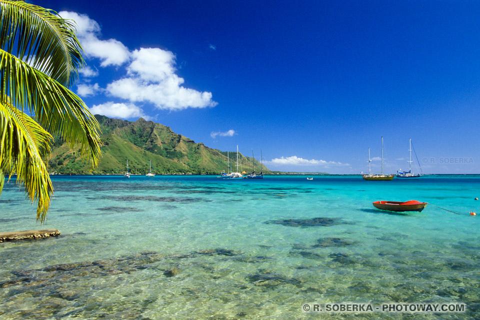 Photo de la baie Cook Rien que pour le plaisir des yeux à Moorea