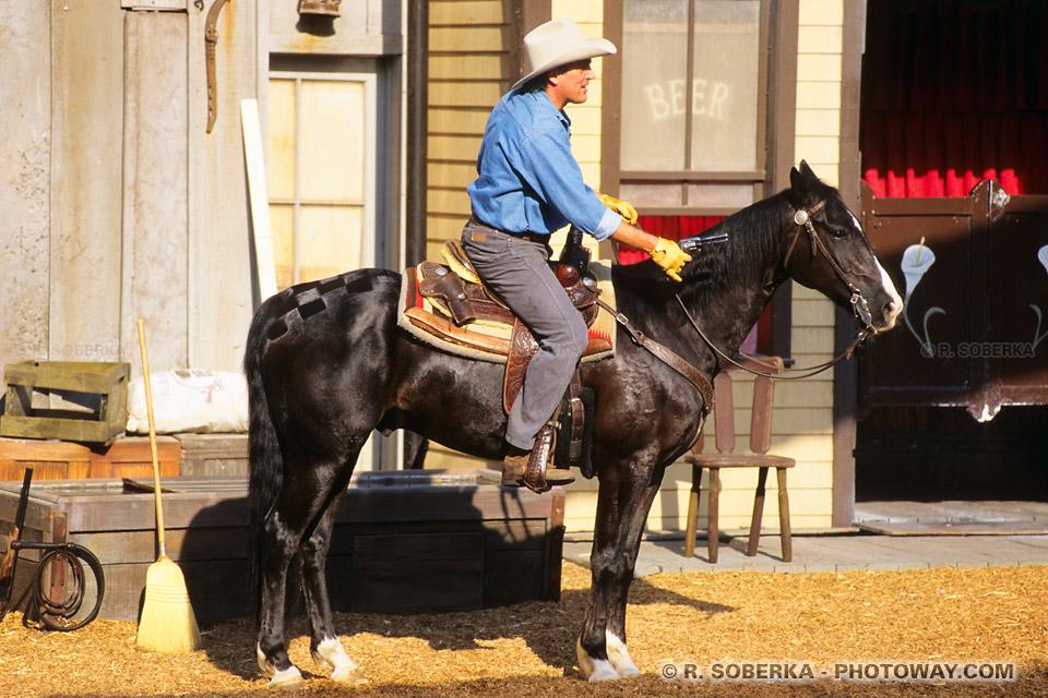 Photos de chevaux de cowboys photo d'un cheval d'un cowboy