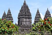 Indonésie, île de Java